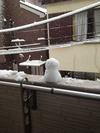 **雪だるま**