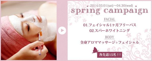 2014_spring_bn.jpg
