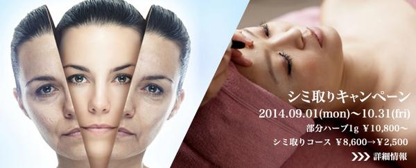 2014-shimi-bn.jpg